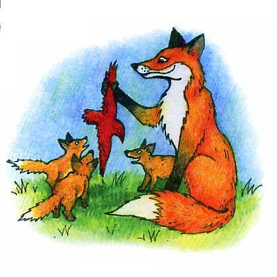 Как воспитывают своих детенышей лисы