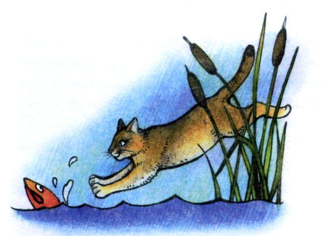 Камышовый кот картинки
